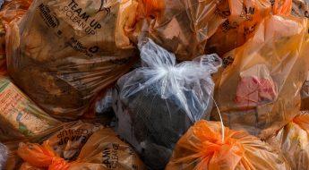 Co oznaczają kolory worków na śmieci
